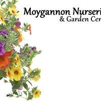 Moygannon Garden Centre