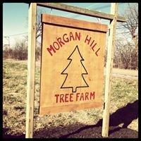Morgan Hill Tree Farm