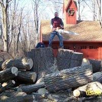 The Veteran Tree Service