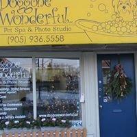 Doggone Wonderful Pet Spa & Photo Studio