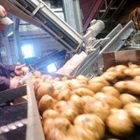Maine Potato Growers Inc