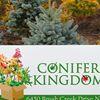 Conifer Kingdom