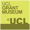 Grant Museum of Zoology, UCL
