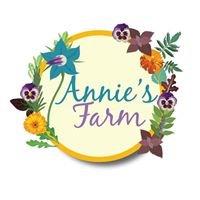 Annie's Organic Farm Cashel Tipperary