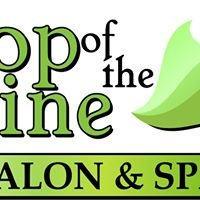 Top of the Line Salon and Spa