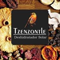 Tzenzontle  Deshidratador Solar de Alimentos