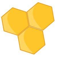 Münsterländer Bienenhonig