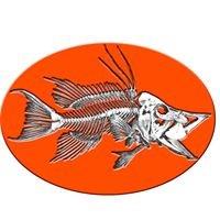 Hogfish Bar CDA