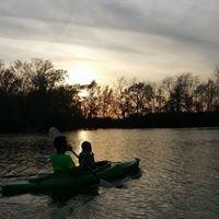 Beaver Point Camping & Fishing