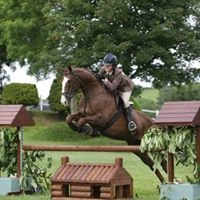 Millies Horse Jumps and Timber Products