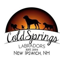 ColdSprings Labradors