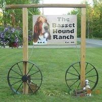 The Basset Hound Ranch