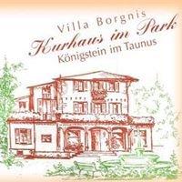 Villa Borgnis-Kurhaus im Park Königstein