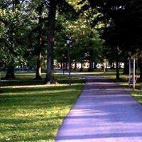 Elkins City Park