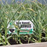 "Black Diamond Soil Services ""Good Soil"""