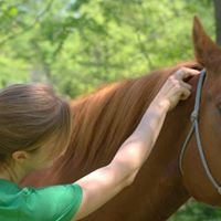 Healing Hands for the Horse, L.L.C.