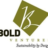 Bold Ventures LLC