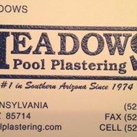 Meadows Pool Plastering