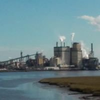 Georgia Pacific Brunswick Cellulose Mill