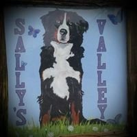 Sally's Valley Kennels
