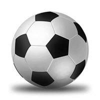 HCU Carrollwood Soccer Fields