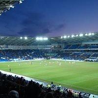 Cardiff Millienum Stadium
