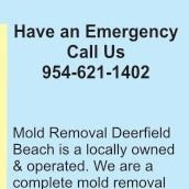 Mold Removal Deerfield Beach