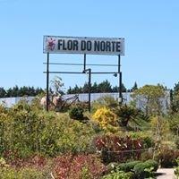 Flor do Norte - Comércio de Plantas e Flores, Lda.