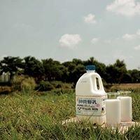 台灣牧場 Taiwan Dairy Farm/柳營鮮乳