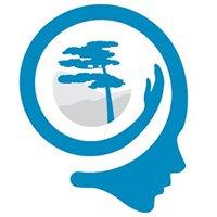Mente Aberta - Centro Brasileiro de Mindfulness e Promoção da Saúde