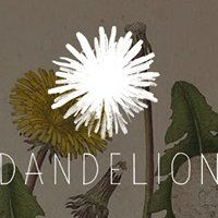 Dandelion Pop-Up