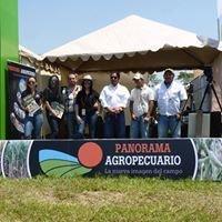 Panorama Agropecuario Bolivia