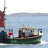 Island Fish Ltd