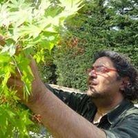 Είδη Κήπου/Φυτά ΑΓΚΟΠ