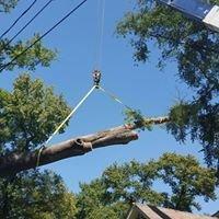 Lester's Tree Service, LLC