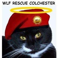 WLF Rescue & Sanctuary