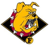 Ferris State University - Computer Information Systems