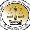 The National Association of Blacks in Criminal Justice