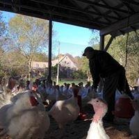 Breene Acres Family Farm