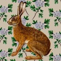 Hare & Hawthorn Bindery & Bookshop