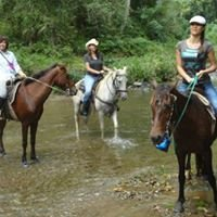 BIG Q's Mountain Horseback Riding Adventure
