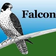 Falcon Realty Wisconsin