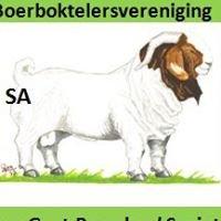 SA Boerboktelersvereniging / SA Boer Goat Breeders' Society