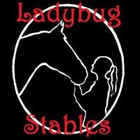 Ladybug Stables