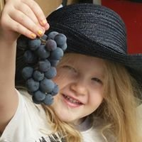 Covered Bridge Farms/Shimandle's Grapes