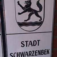 Schwarzenbek Rathaus