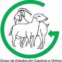 GRECO - Grupo de Estudos em Caprinos e Ovinos