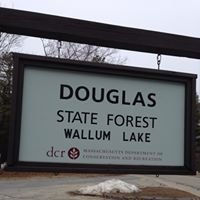 Douglas State Forest