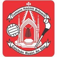 St Bronagh's Social Club