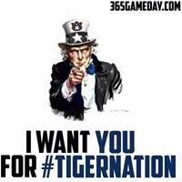 Auburn Tigers on 365Gameday.com